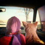 Cestování se psem do Německa