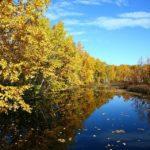 Dlouhodobá předpověď počasí listopad