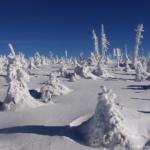 Dlouhodobá předpověď počasí na únor