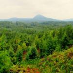 Dovolená pro cyklisty – Lužické hory